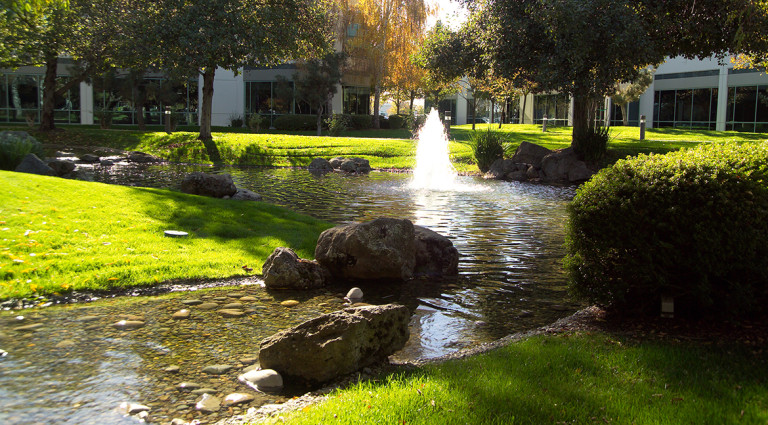 Commercial water features sugar pine studios for Bass pond construction